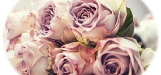 floria poudre d amour