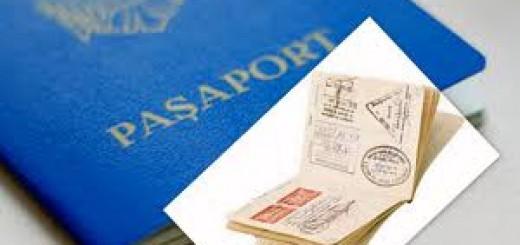 pasaport mol