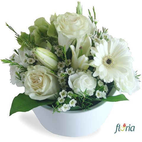 flori-puritate-20872