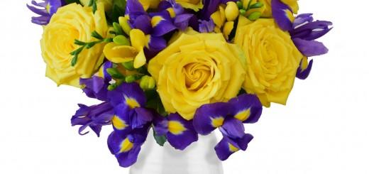 Floria_flori-trandafirii-sfintei-marii