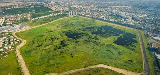 Deltei Bucureștilor - Parcul Natural Văcărești